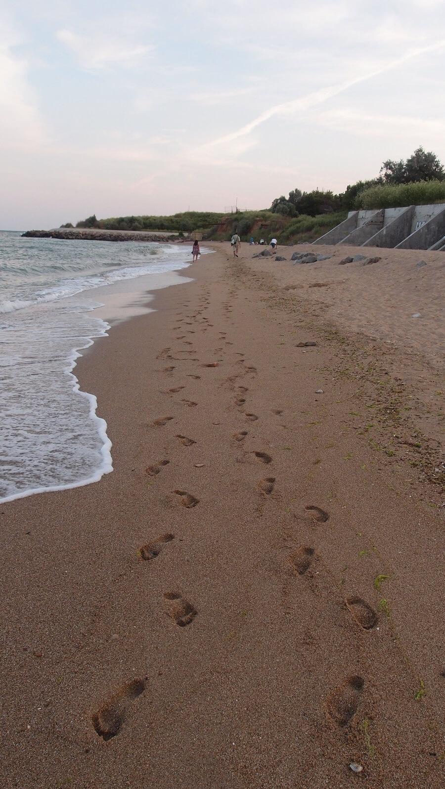 Черноморск_дикий_пляж
