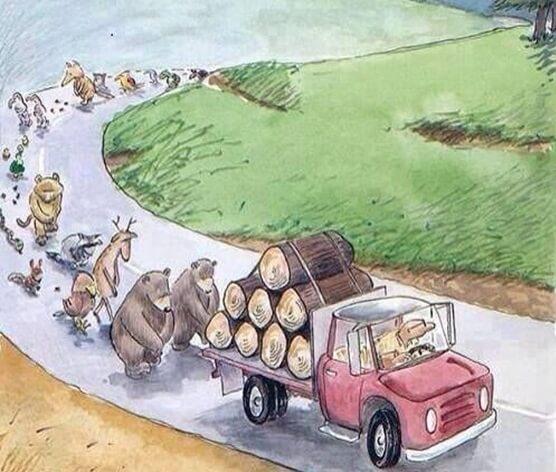 unichtozenije_lesa